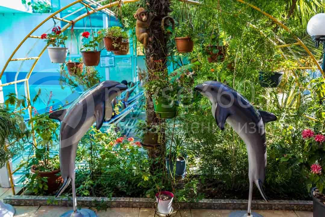 Отель Дельфин в Адлере 7