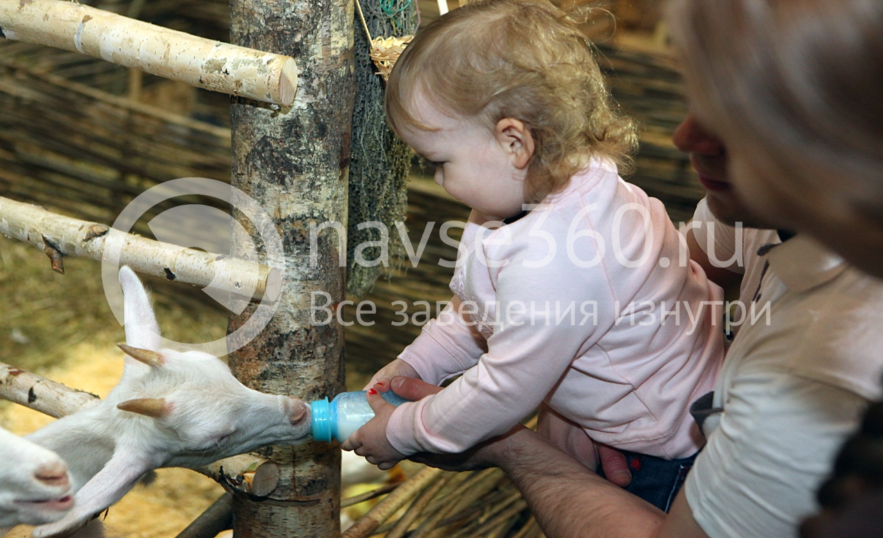 контактный зоопарк в Красногорске