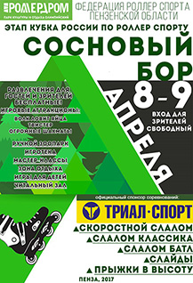Этап кубка России по роллер спорту