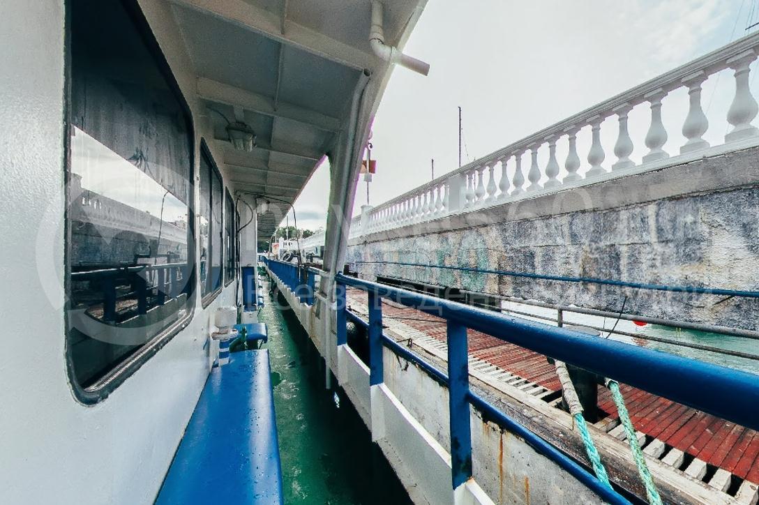 Саламандра, лайнер морские прогулки геленджик 09