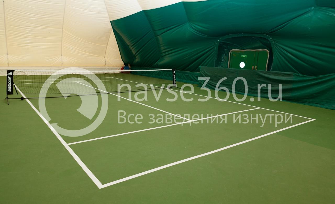 зенит, центр развития детского спорта, академия тарпищева, большой, настольный теннис, красногорск