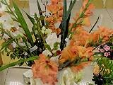 Соцветие, садово-флористический центр