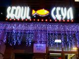 Сеул на Радищева, кафе