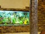 Гоньбинские сауны, оздоровительный комплекс