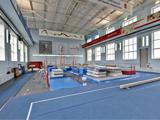 СпортАрт, вологодский центр спортивной гимнастики