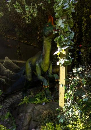 """Выставка """"Возвращение динозавров"""""""