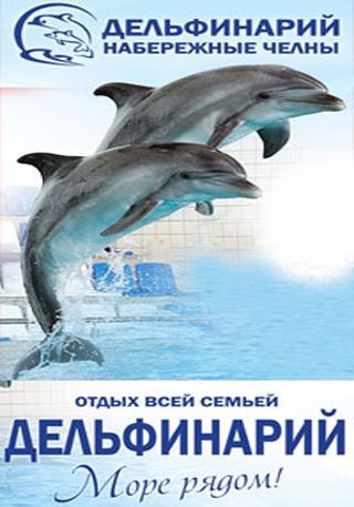 За кулисами дельфинария