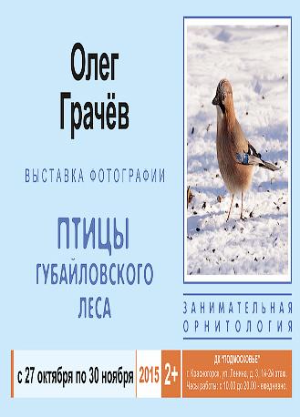 Фотовыставка Олега Грачёва «Птицы губайловского леса».