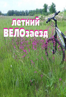 Летний велозаезд